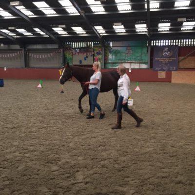 Jude - girl leading horse